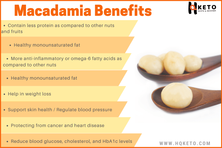 Macadamia nuts Benefits